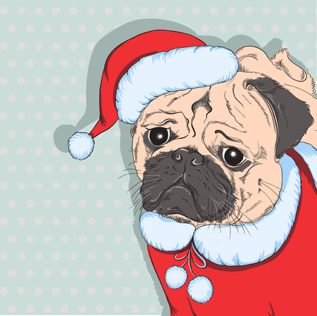 Hand Drawn Vector hipster dog  French Bulldog breed in the red hat of Santa Claus Vector