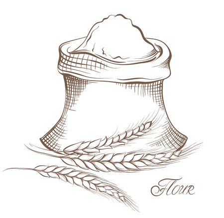 Vector hand drawn flour and wheat grain.