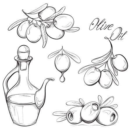 Hand drawn olive set. Olive oil and olive branch. Black and white vector illustration Çizim