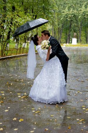 sotto la pioggia: Bella sposi baciare sotto la pioggia. Sposa e sposo a piedi nel parco sotto un ombrello in una giornata di pioggia