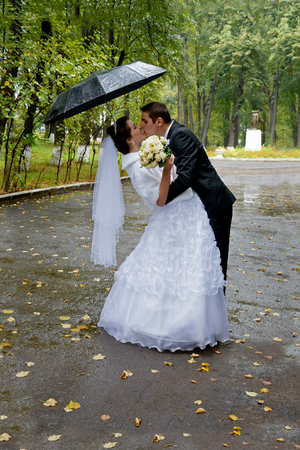 sotto la pioggia: Beautiful wedding couple kissing in the rain. Bride and groom walking in the park under an umbrella on a rainy day Archivio Fotografico