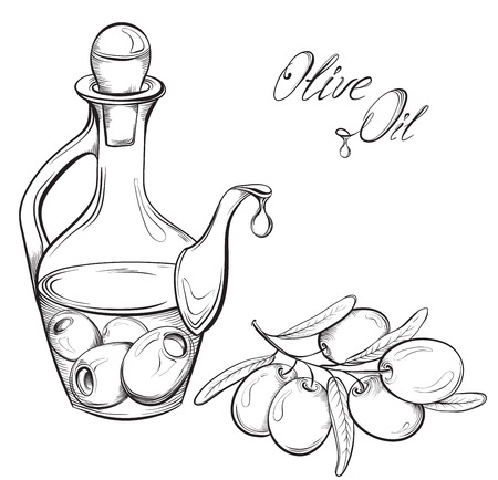 black branch: Hand drawn Olive oil and olive branch. Black and white vector illustration Illustration