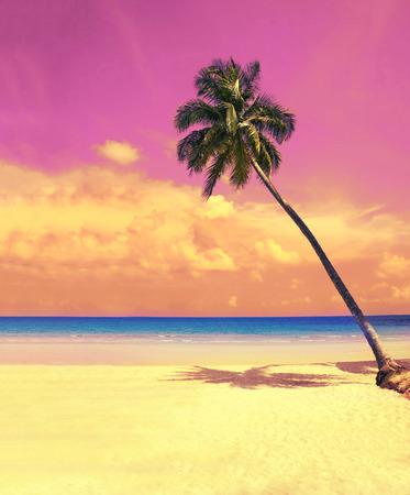 楽園の性質は、熱帯のビーチの白砂のビーチで椰子の木。レトロなビンテージ フィルターで夏旅行背景。