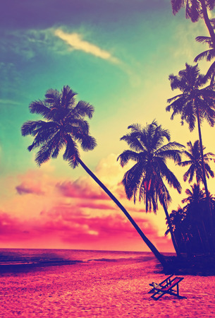 Mooi tropisch strand met silhouetten van palmbomen bij zonsondergang