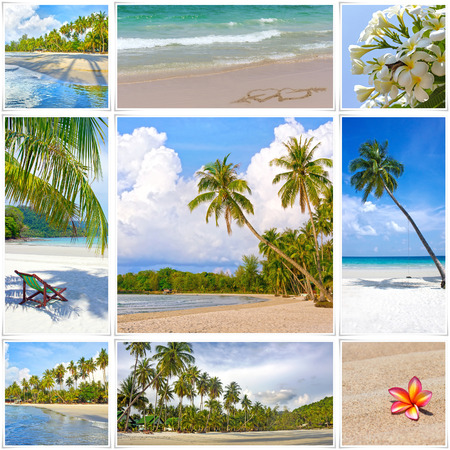caribbean beach: Collage of summer tropical beach image. Nature and travel background