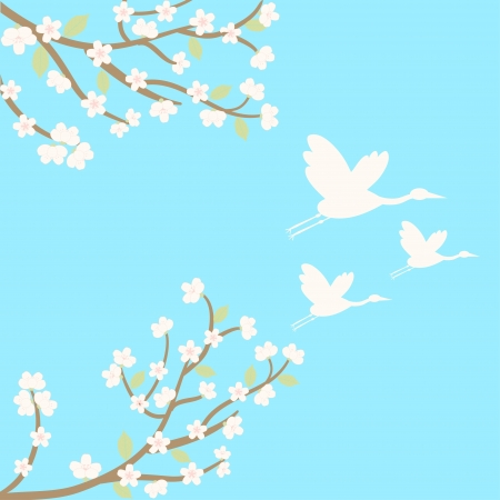 vector background with sakura and cranes Vector