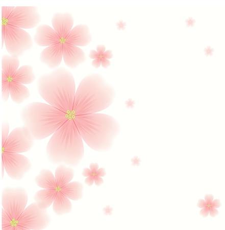 Sfondo con fiori rosa Archivio Fotografico - 19569081