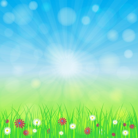 flowers bokeh: Spring background with blue sky, green grass, flowers. Bokeh and light  effect. Vector eps 10 Illustration
