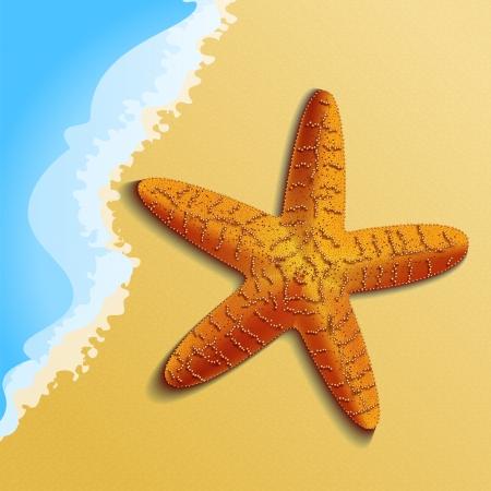 ビーチでオレンジ色のヒトデは非常に詳細な  イラスト・ベクター素材