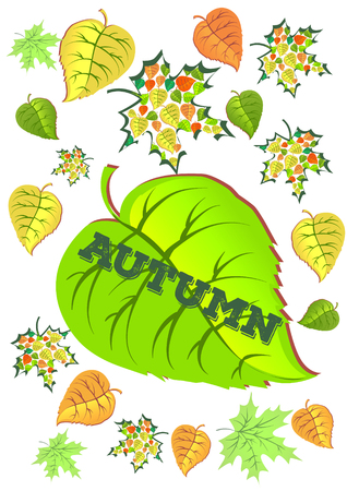 damp: Autumn leaves background, can be use as banner or poster. Illustration