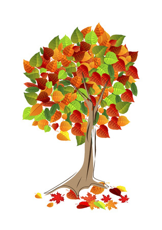 Autumn leaves background, can be use as banner or poster. Vector illustration. Design elements. Illustration