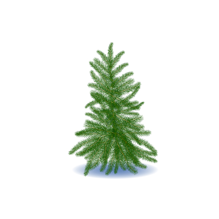 fur trees: Fur Holiday Tree in winter. Snowflakes Winter Happy Poster Concept.
