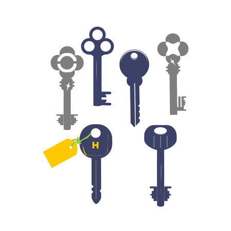tore: house key vector icon on the white background