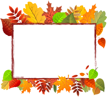 Autumn leaves background can be use as banner or poster vector illustration. Illustration