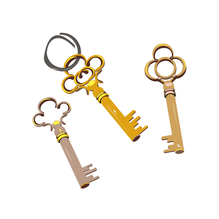 House keys vector icon on the white background