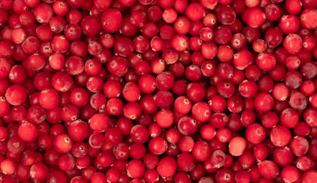 Background with red cranberry berries. Frozen berries pattern, close up. View from above. Фото со стока