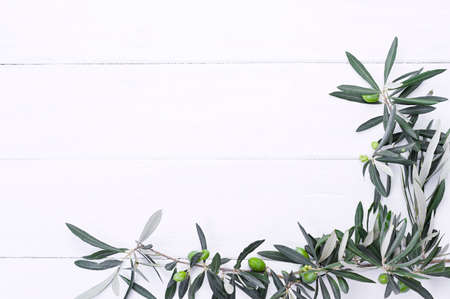 Fresh olive branch with berries on a white wooden background. Traditional plant of Italy. Free space for text. Flat lay
