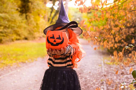 Happy Halloween. A little girl in a witch hat and clothes holds a basket for sweets. Child in the autumn park. Soft changing focus on the main subject. Copy space. High quality photo