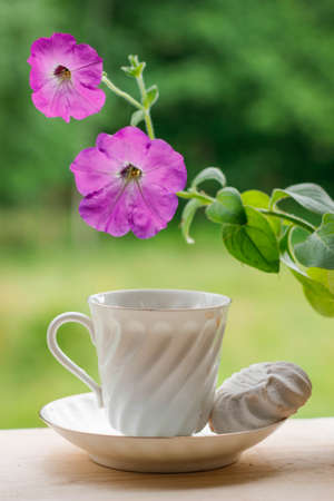 Elegant white porcelain Cup with a Saucer and beautiful violet Petunia flowers on a wooden Terrace against the background of Nature. Russian Imperial Porcelain.