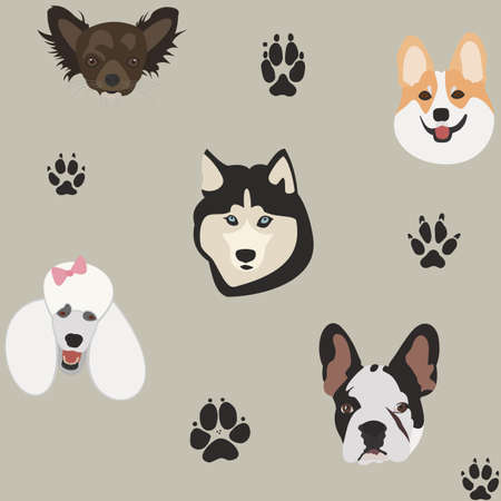 Simple pattern with dog heads and paw prints on gray. Vector background in flat style. Cartoon set chihuahua, corgi, husky, poodle, french bulldog. Different funny characters.