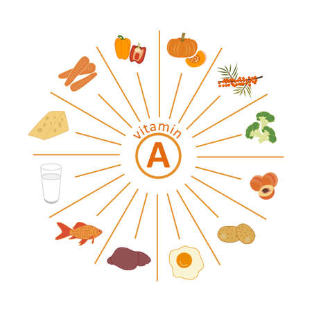 Set of foods rich in vitamin A. Carrots, bell peppers, pumpkin, sea buckthorn, broccoli, peach, potatoes, egg yolk, animal liver, fish, milk, cheese. Vector flat on white. Healthy eating, fitness.
