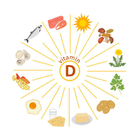 Sources of vitamin D. Sun and food. Pink salmon, herring, oysters, mushrooms, raw egg yolk, dairy products, cheese, butter, dandelion greens. Vector Infographics. Healthy nutrition. High immunity. Иллюстрация