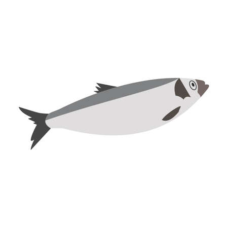 Fish sea herring. Hand-drawn vector, flat style. Animals of the ocean, nature, atlantic. Healthy, wholesome food, source of vitamin D. For recipes, menus, restaurants, cafes, textbooks, illustrations.