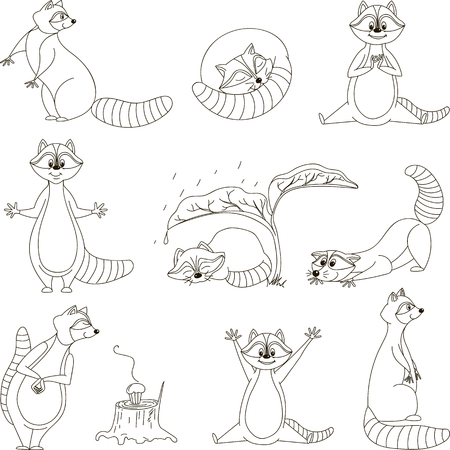 outwit: Black and white set, cartoon raccoons. Vector. Illustration