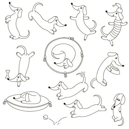 cute dog: Cute dog characters set
