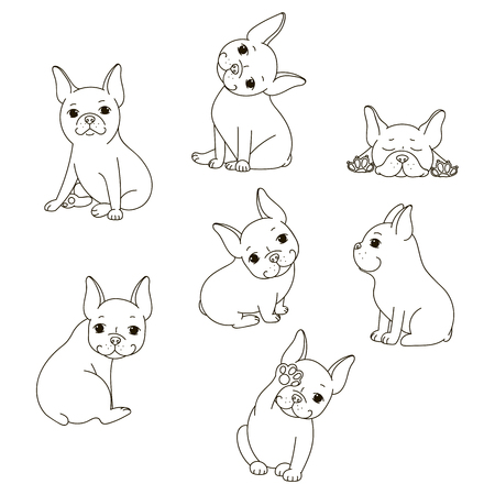 brawny: French Bulldog. The isolated vector outline on white background.