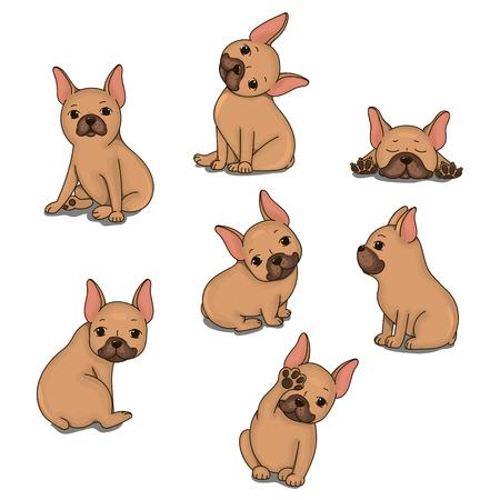 brawny: French Bulldog. Isolated vector object. Illustration