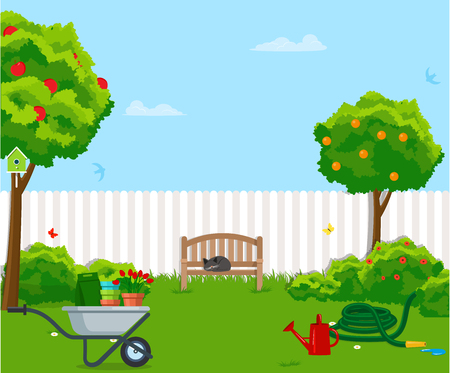 Sunny back yard with green lawn, fence, bench, fruit trees, bushes, flowers, birdhouse, hose, wheelbarrow. Vector illustration.