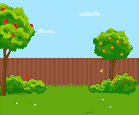 Sunny back yard with green lawn, fence, fruit trees. Vector flat illustration.