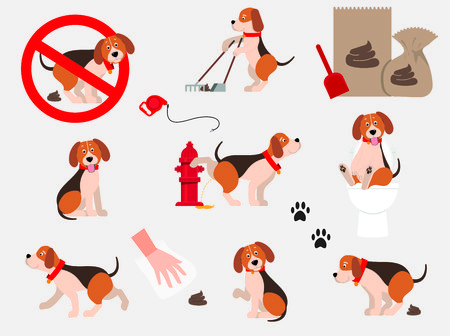 Cartoons, funny pets. Set of information dog icons. Isolated on white background. Banque d'images - 109819343