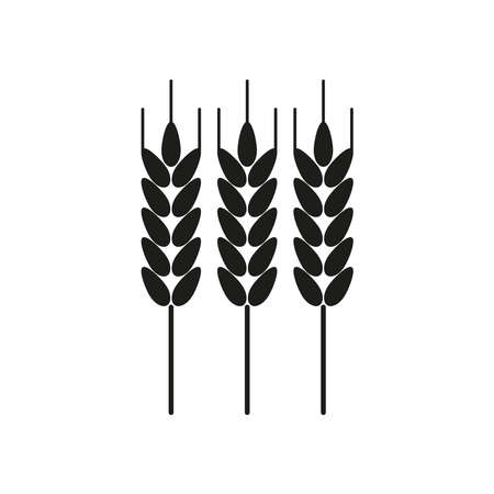 Icon of wheat. Simple vector illustration on a white background.