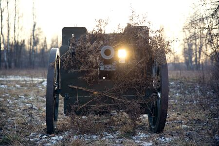 An artillery cannon masked branches. Imagens