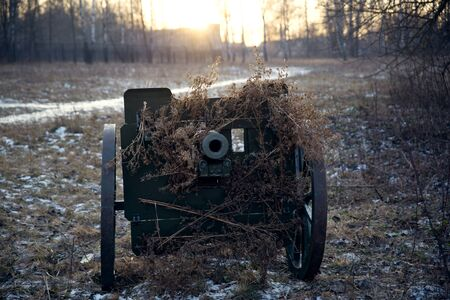 An artillery cannon masked by branches.