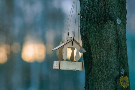 A feeder for small birds (tits) hangs on a tree in winter. The rays of the setting sun in the background. Stok Fotoğraf