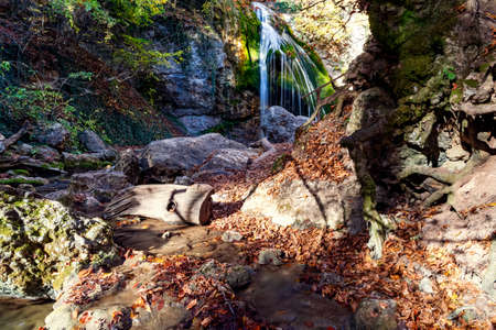 Thin streams of a mountain waterfall and the huge roots of an old tree