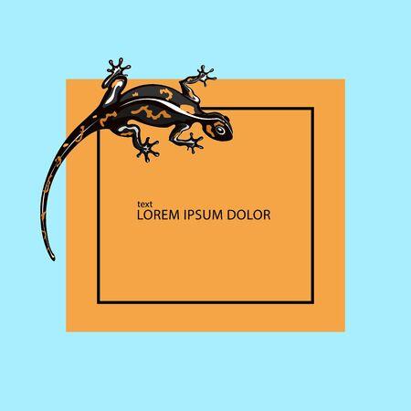 Salamander. Gecko logo vector icon illustration
