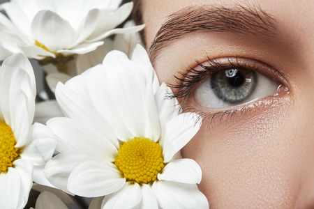 naturel: Close-up macro of beautiful female eye with perfect shape eyebrows. Clean skin, fashion naturel make-up. Good vision. Spring natural look with chamomile flowers Stock Photo