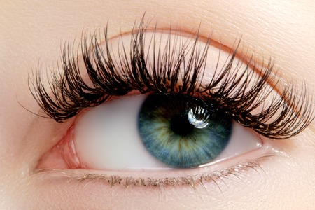 Schönes Makro Schuss von weiblichen Auge mit extrem lange Wimpern und schwarzen Linien Make-up. Perfekte Form Make-up und lange Wimpern. Kosmetik und Make-up. Nahaufnahme Makroaufnahme Mode Augen Gesicht Standard-Bild