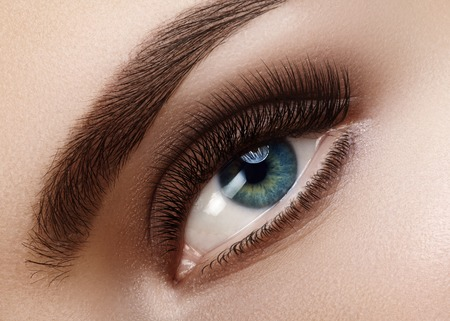 b2472d1a744 Close-up macro of beautiful female eye with perfect shape eyebrows. Clean  skin,
