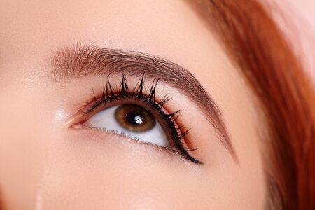 Beautiful Macro Female Eye with Extreme Long Eyelashes and Celebrate Makeup. Perfect Shape Make-up, Fashion Long Lashes. Cosmetics and make-up. Closeup macro shot of fashion eyes visage Banque d'images
