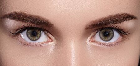 Close-up Macro of Beautiful Female Eyes with Perfect Shape Eyebrows. 写真素材