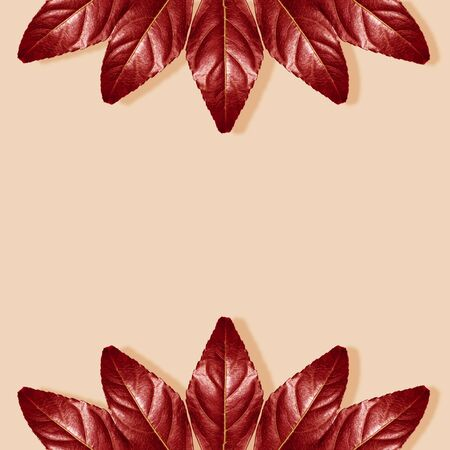 Autumn composition. Autumnal Red Leaves on Pastel Beige Background. Fall Concept. Flat Lay, Top View and Copy Space.