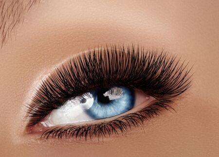 Piękne kobiece oko makro z ekstremalnie długimi rzęsami i świętuj makijaż. Idealny kształt makijażu, modne długie rzęsy. Kosmetyki i makijaż. Zbliżenie strzał makro moda oczy wizaż Zdjęcie Seryjne