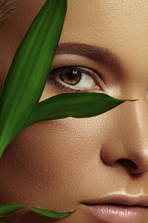 Close-up face of beautiful young woman with smooth tanned skin covered by leaves. Portrait of beauty model with natural bronze make-up. Spa, skincare and wellness Foto de archivo