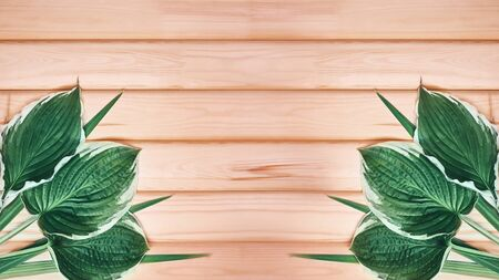 Beautiful Layout Made of Tropical Green Leaves and Empty Wooden background For Copy Space. Minimal Natural Background. Foto de archivo