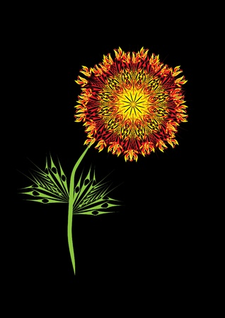 Gold fire flower on isolated background.. Illustration. Vector